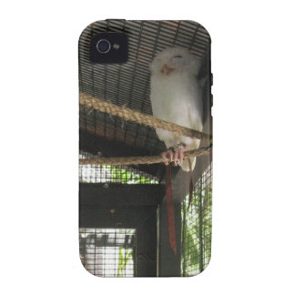 Owl Vibe iPhone 4 Cases