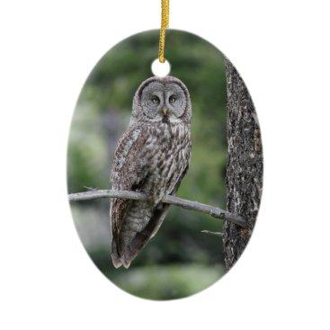 Christmas Themed Owl Christmas Ornament - Great Grey Owl