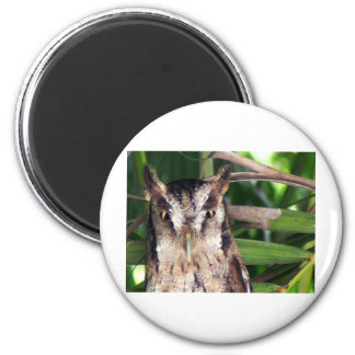 Owl close up Customize it! 2 Inch Round Magnet
