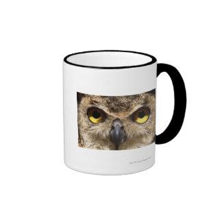 Owl Close-Up Ringer Mug