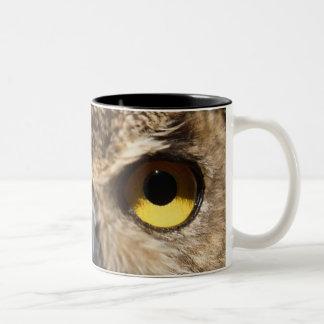 Owl Close-Up Two-Tone Coffee Mug