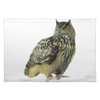 Owl Cloth Placemat