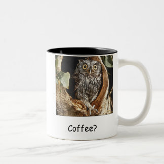 Owl/ Coffee Mug