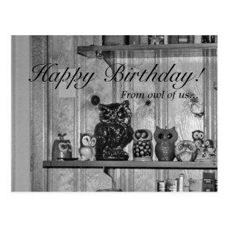 Owl Collection, Retro Shelf Full of Vintage Owls Postcard