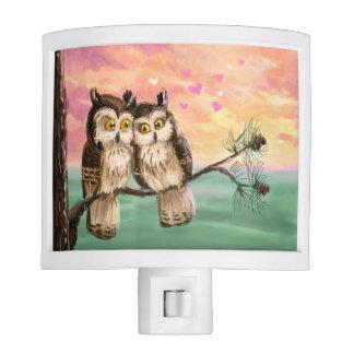 Owl couple love sunset night light