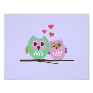 Owl couple photo art