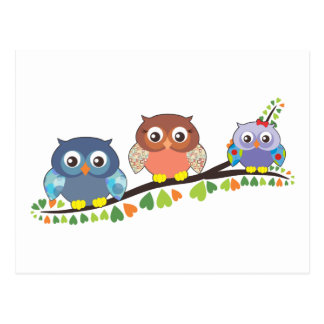 Owl Critters Postcard