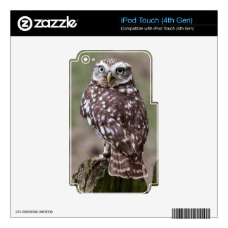 Owl Decals For iPod Touch 4G