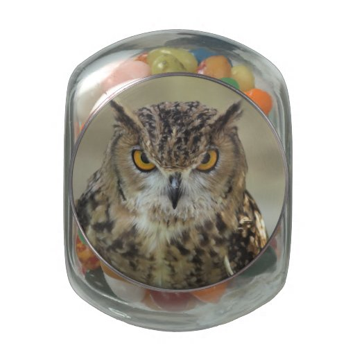 Owl Designs Glass Jar