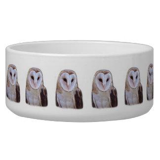 owl dog water bowl