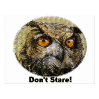 Owl - Don't Stare Post Cards