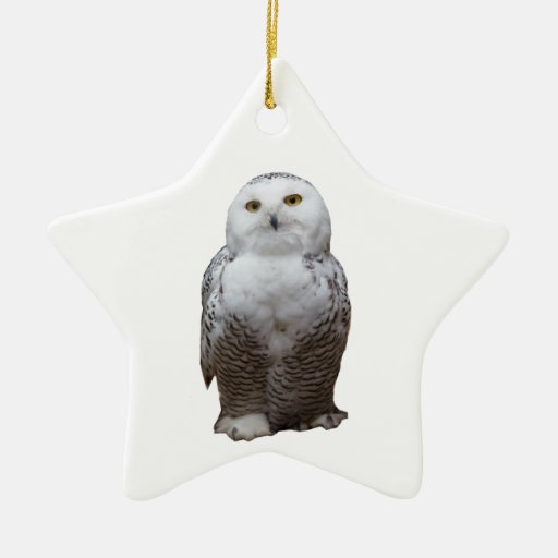 Owl Double-Sided Star Ceramic Christmas Ornament