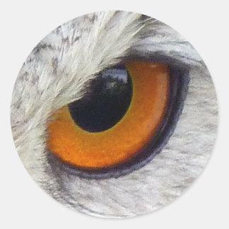 Owl Eye #2- Orange Classic Round Sticker