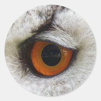 Owl Eye #7- Orange Classic Round Sticker