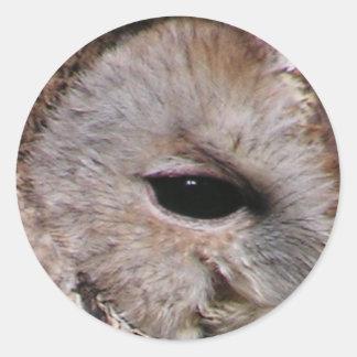 Owl Eye #8- Dark Classic Round Sticker