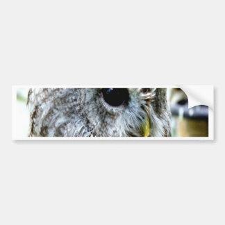 Owl eye enloy beautiful world car bumper sticker