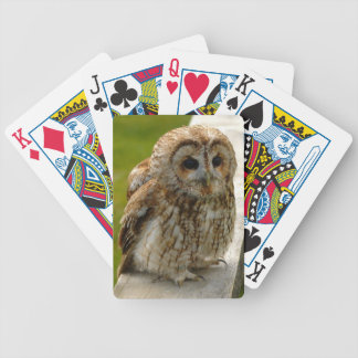 Owl Eyes Bicycle Playing Cards