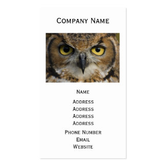 Owl Eyes Double-Sided Standard Business Cards (Pack Of 100)