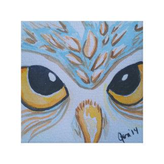 Owl Eyes Canvas Print