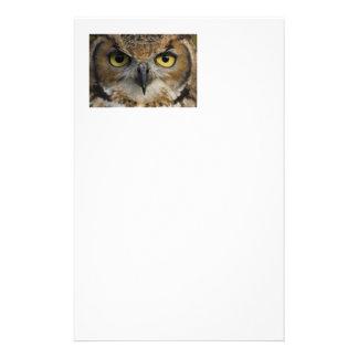 Owl Eyes Customized Stationery