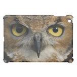 Owl Eyes iPad Mini Covers