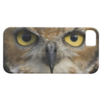 Owl Eyes iPhone 5 Covers
