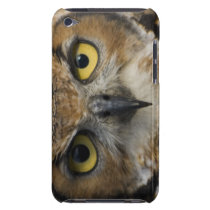 Owl Eyes  iPod Case-Mate Case