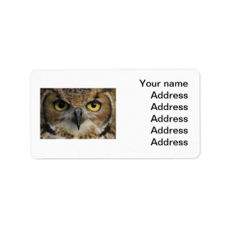 Owl Eyes Personalized Address Labels