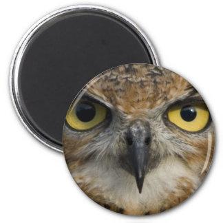 Owl Eyes Magnet