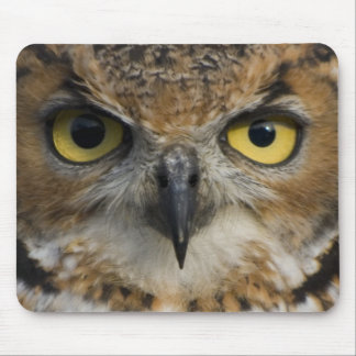 Owl Eyes Mouse Pad