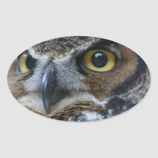 Owl Eyes Oval Stickers