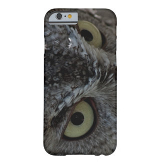 Owl Eyes photo iPhone 6 case