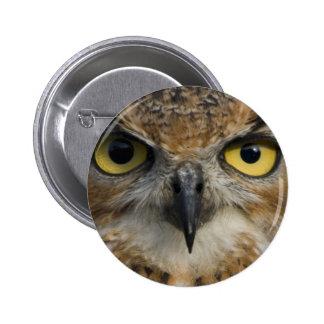 Owl Eyes Pinback Button