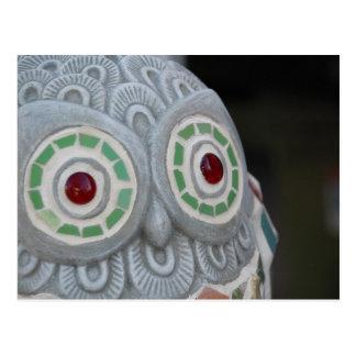 Owl Eyes Postcard
