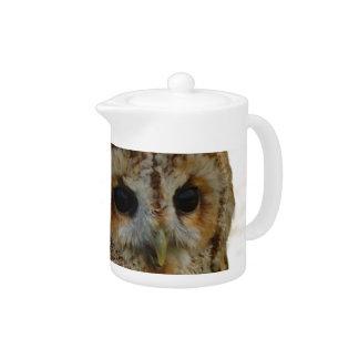 Owl Eyes Teapot