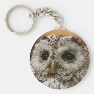 Owl Face #3 Key Chains