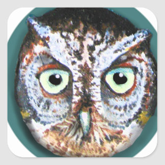 OWL FACE WITH BIG EYES SQUARE STICKER