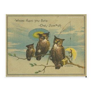 owl family and fishing fox postcard