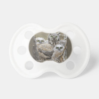 Owl Family Nature Birds Animals Pacifier
