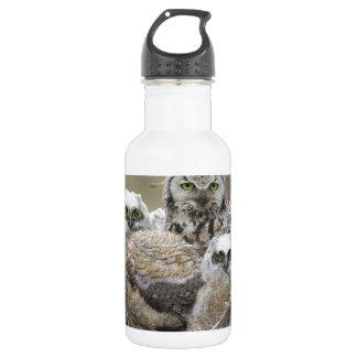 Owl Family Nature Birds Animals 18oz Water Bottle