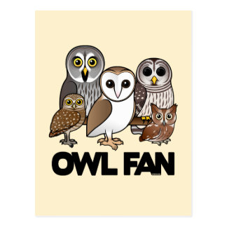 Owl Fan Postcard