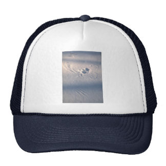 Owl feather imprint in the snow mesh hats