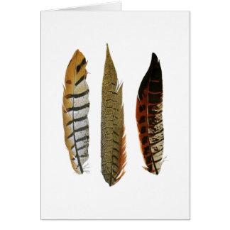 Owl feathers good luck card