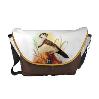Owl finches realistic painting courier bag