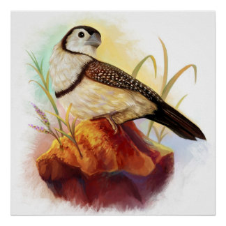 Owl finches realistic painting poster