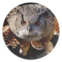 Owl Flying At Night Dinner Plate
