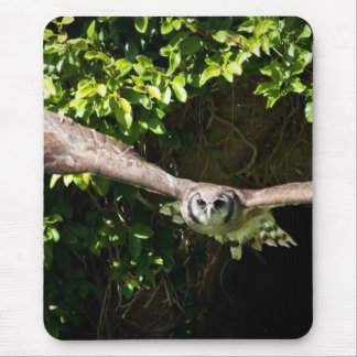 Owl Flying Mouse Pad