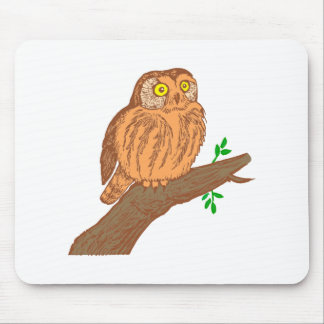 Owl fogy sawing fogy Saw whet owl Mouse Pad
