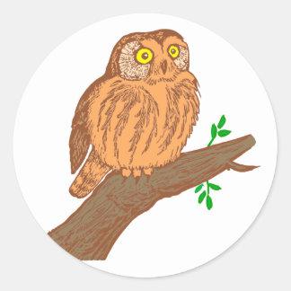 Owl fogy sawing fogy Saw whet owl Round Sticker