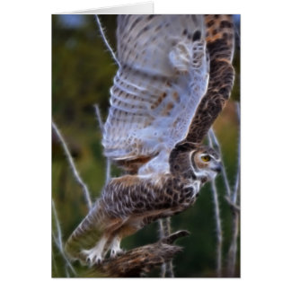Owl Fractal Card
